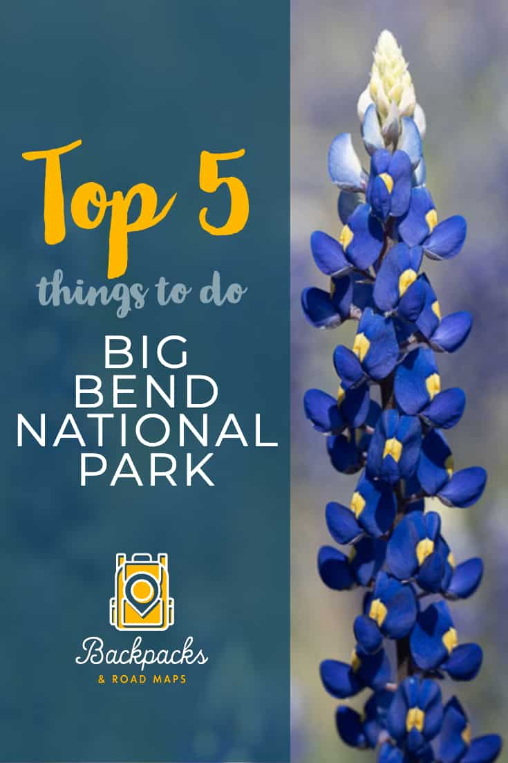 There are so many wonderful things to do in Big Bend National Park. It would take a lifetime to explore the entire park and experience it all. If you\'re planning a trip to Big Bend, however, here are our Top 5 Things to do in Big Bend National Park. #texas | #bigbend | #bigbendnationalpark | #bigbendnps | #nationalparkservice | #nationalparks | #findyourpark | #hiking | #camping | #thingstodo | backpacksandroadmaps.com