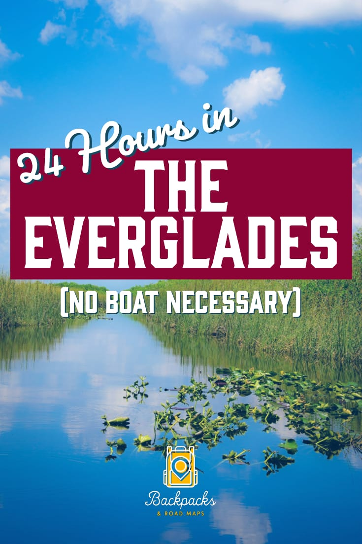 24 Hours in Everglades National Park (No Boat Required)